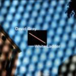 This Year's Love – David Gray